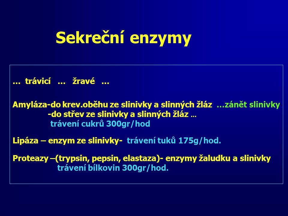 Sekreční enzymy … trávicí … žravé …