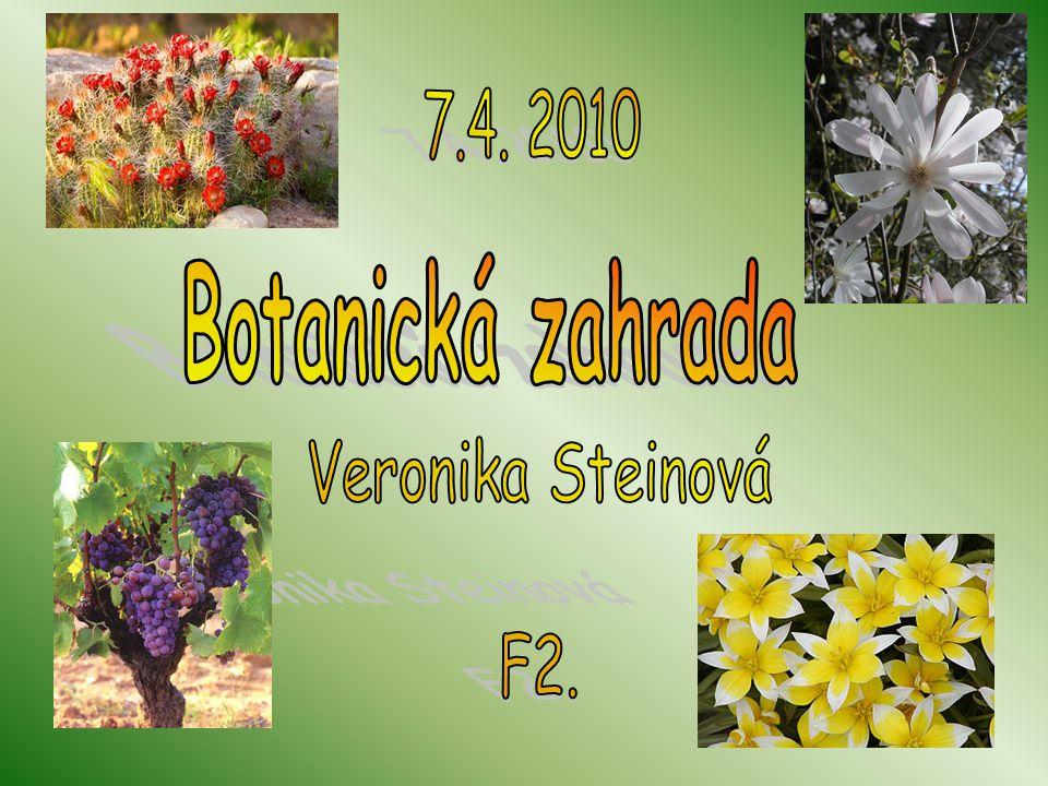 7.4. 2010 Botanická zahrada Veronika Steinová F2.