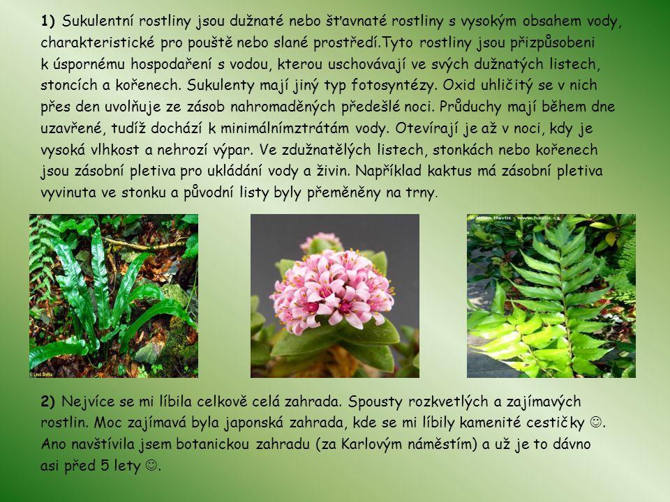 1) Sukulentní rostliny jsou dužnaté nebo šťavnaté rostliny s vysokým obsahem vody,