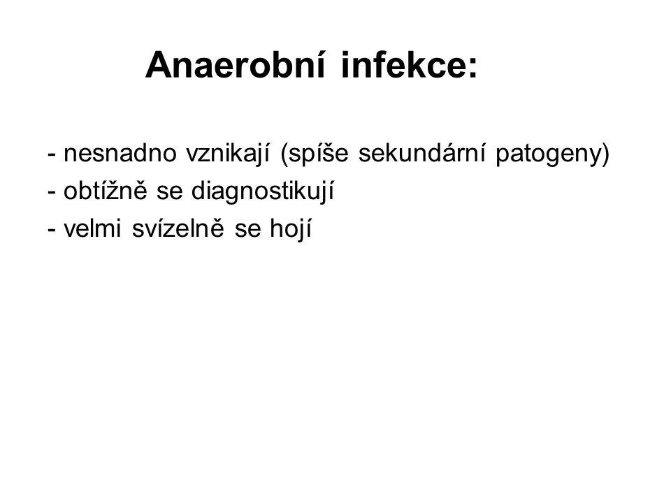 Anaerobní infekce: - nesnadno vznikají (spíše sekundární patogeny)