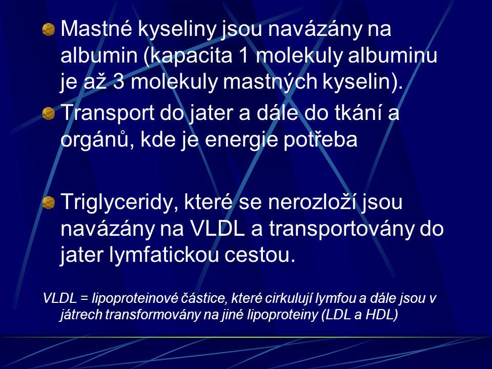 Transport do jater a dále do tkání a orgánů, kde je energie potřeba