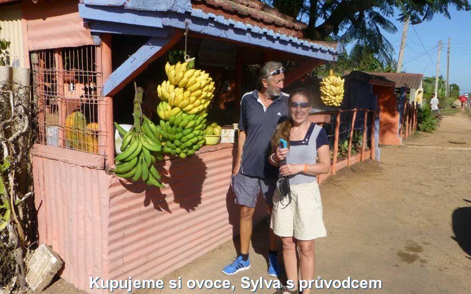 Kupujeme si ovoce, Sylva s průvodcem