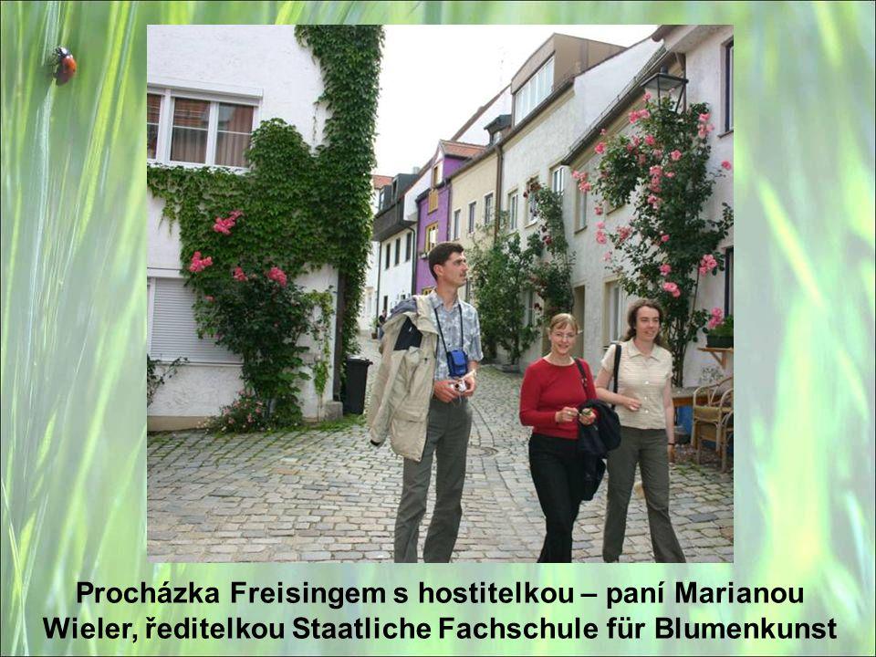Procházka Freisingem s hostitelkou – paní Marianou Wieler, ředitelkou Staatliche Fachschule für Blumenkunst