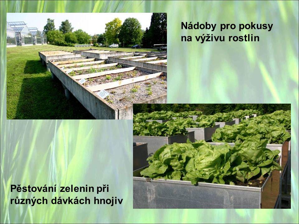 Nádoby pro pokusy na výživu rostlin