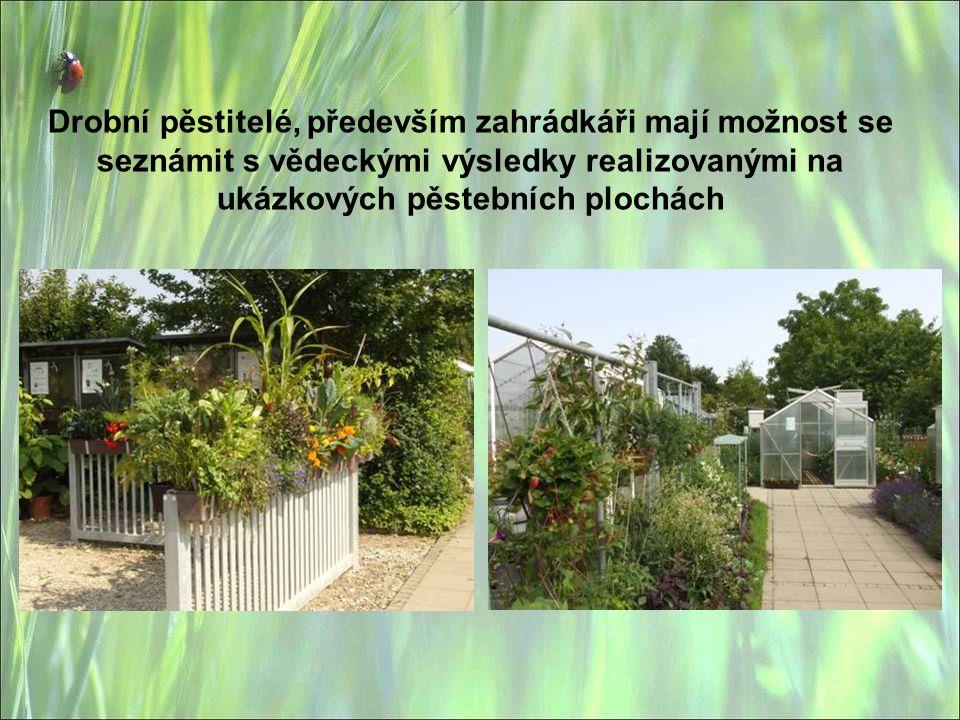 Drobní pěstitelé, především zahrádkáři mají možnost se seznámit s vědeckými výsledky realizovanými na ukázkových pěstebních plochách