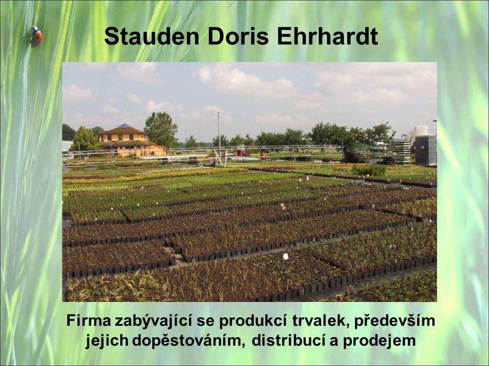 Stauden Doris Ehrhardt