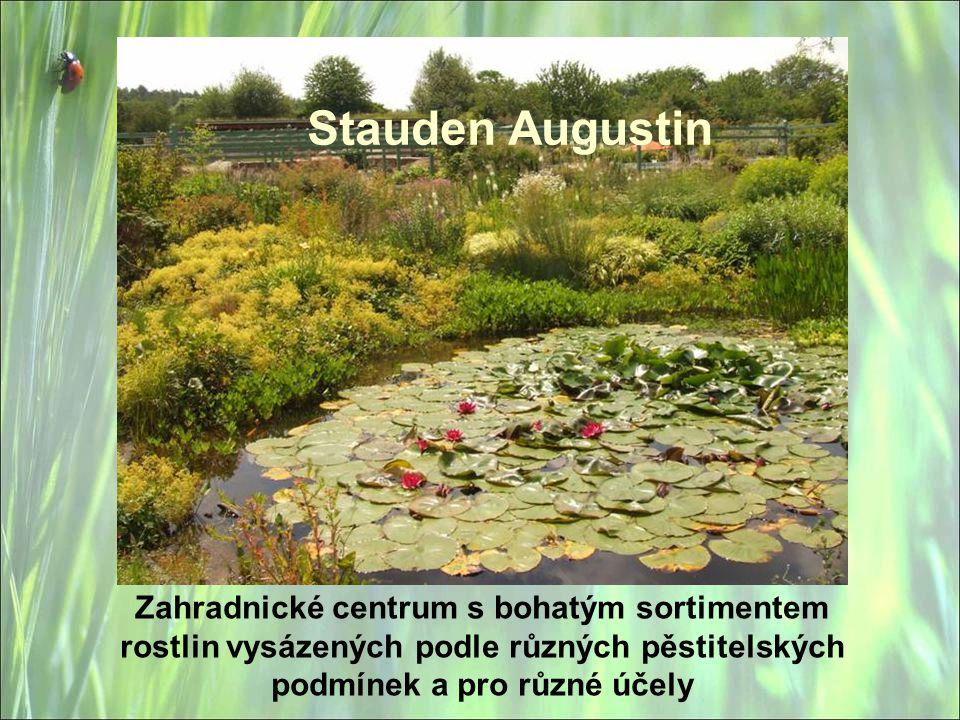 Stauden Augustin Zahradnické centrum s bohatým sortimentem rostlin vysázených podle různých pěstitelských podmínek a pro různé účely.