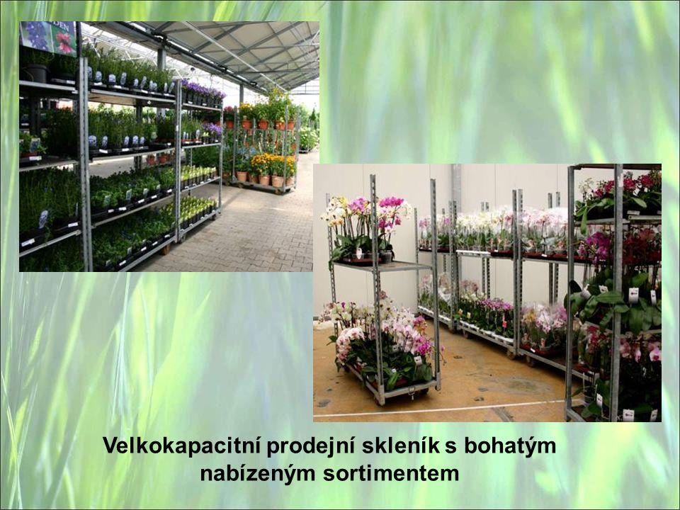 Velkokapacitní prodejní skleník s bohatým nabízeným sortimentem