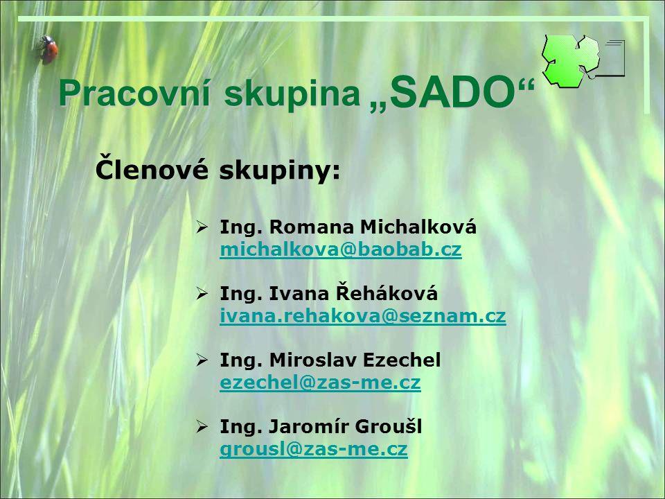 """""""SADO Pracovní skupina Členové skupiny: Ing. Romana Michalková"""