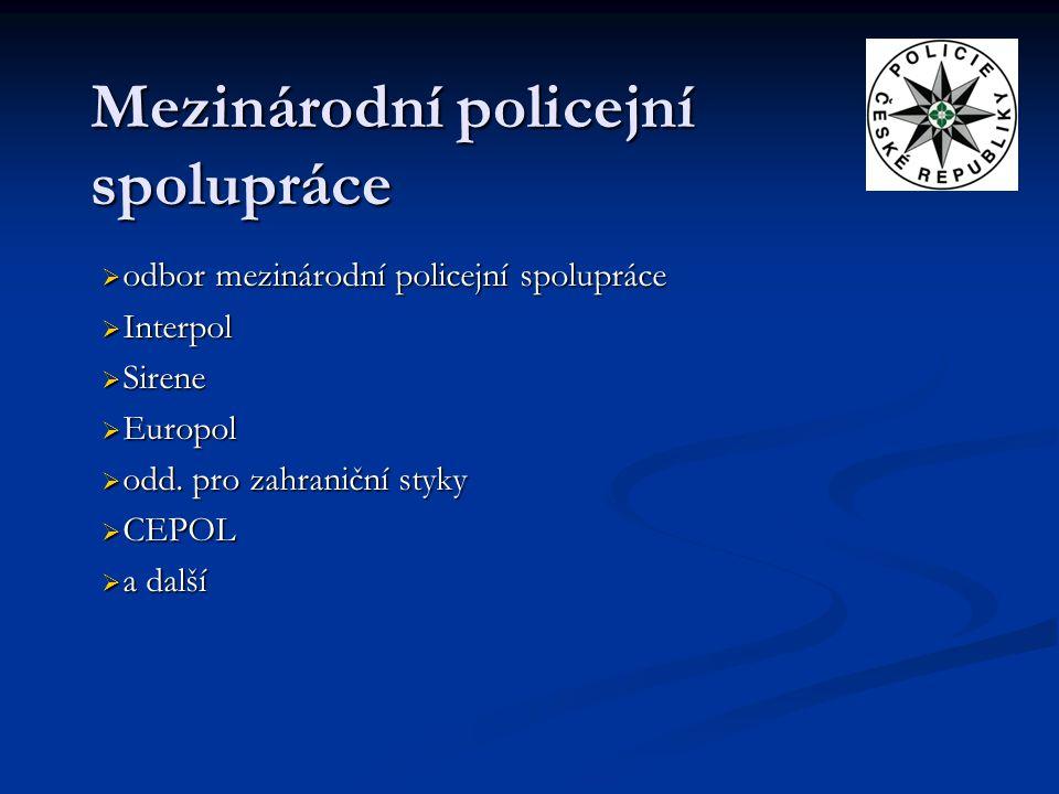 Mezinárodní policejní spolupráce
