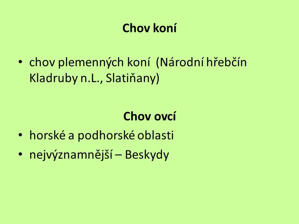 Chov koní chov plemenných koní (Národní hřebčín Kladruby n.L., Slatiňany) Chov ovcí. horské a podhorské oblasti.
