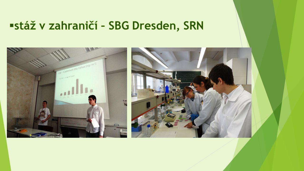 stáž v zahraničí – SBG Dresden, SRN