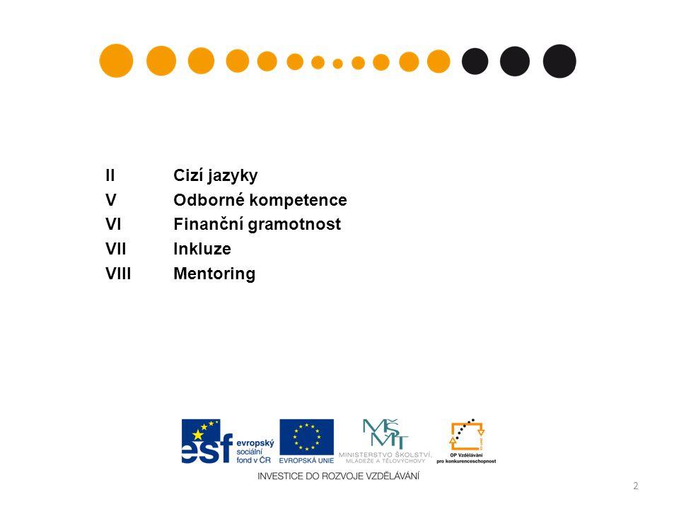 II Cizí jazyky V Odborné kompetence VI Finanční gramotnost VII Inkluze VIII Mentoring