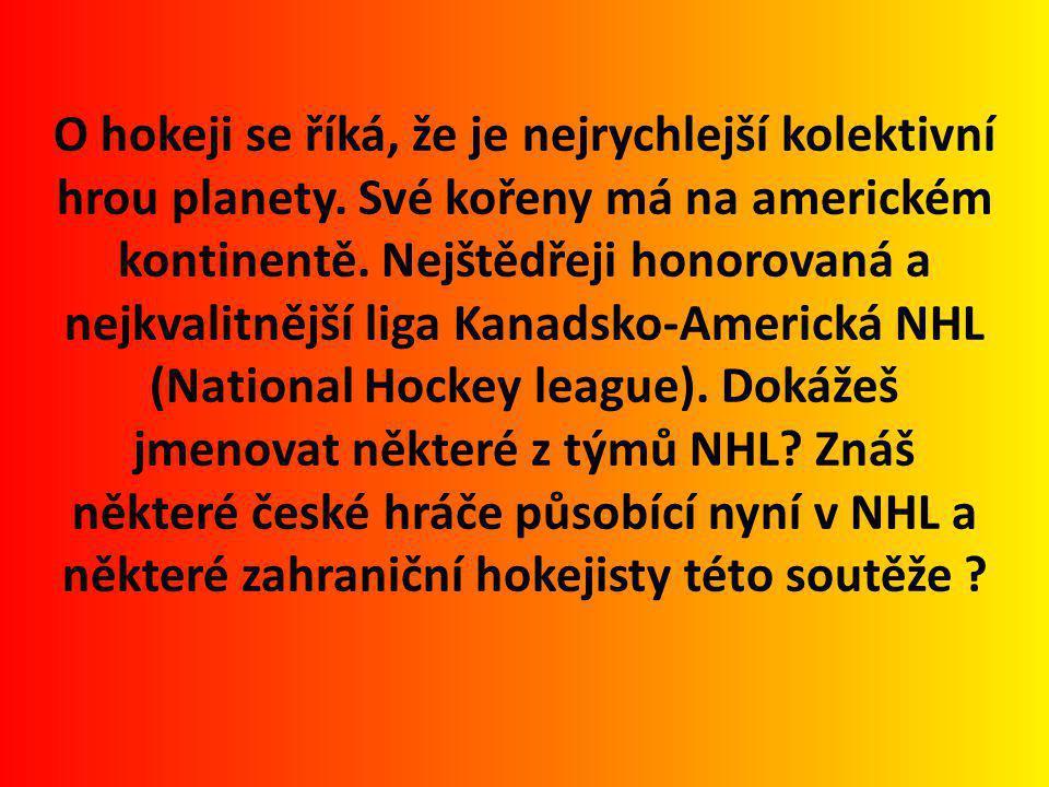 O hokeji se říká, že je nejrychlejší kolektivní hrou planety
