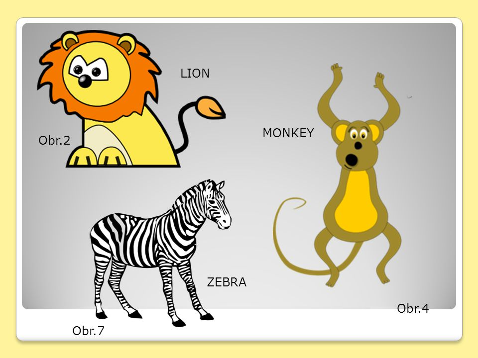 LION MONKEY Obr.2 ZEBRA Obr.4 Obr.7