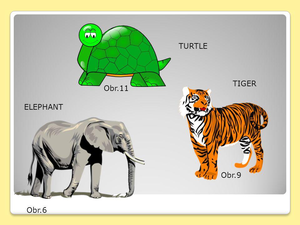 TURTLE TIGER Obr.11 ELEPHANT Obr.9 Obr.6