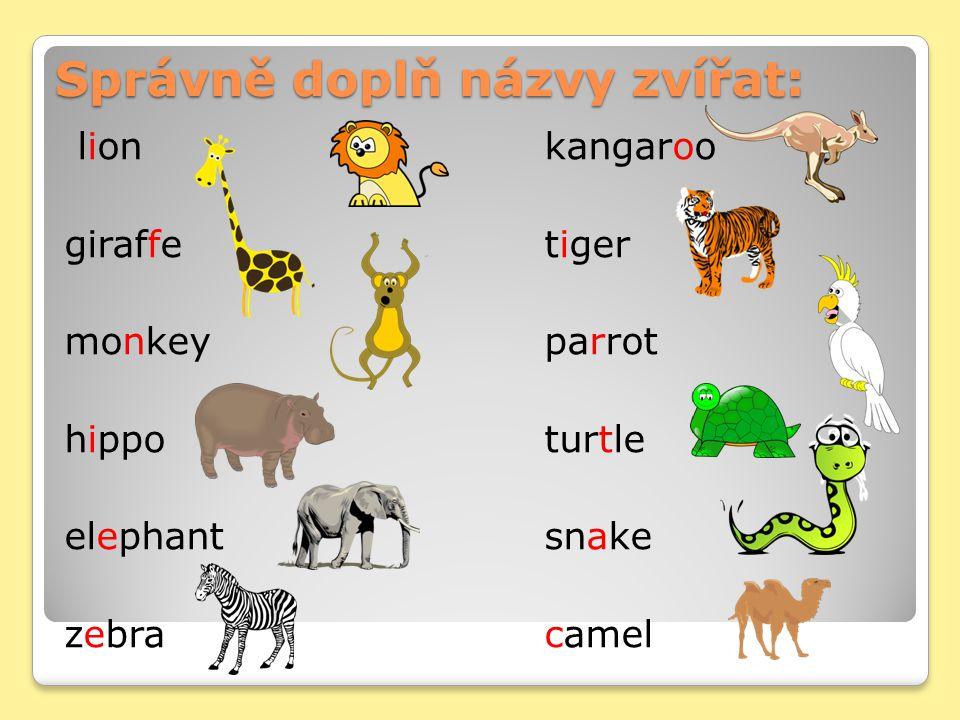 Správně doplň názvy zvířat: