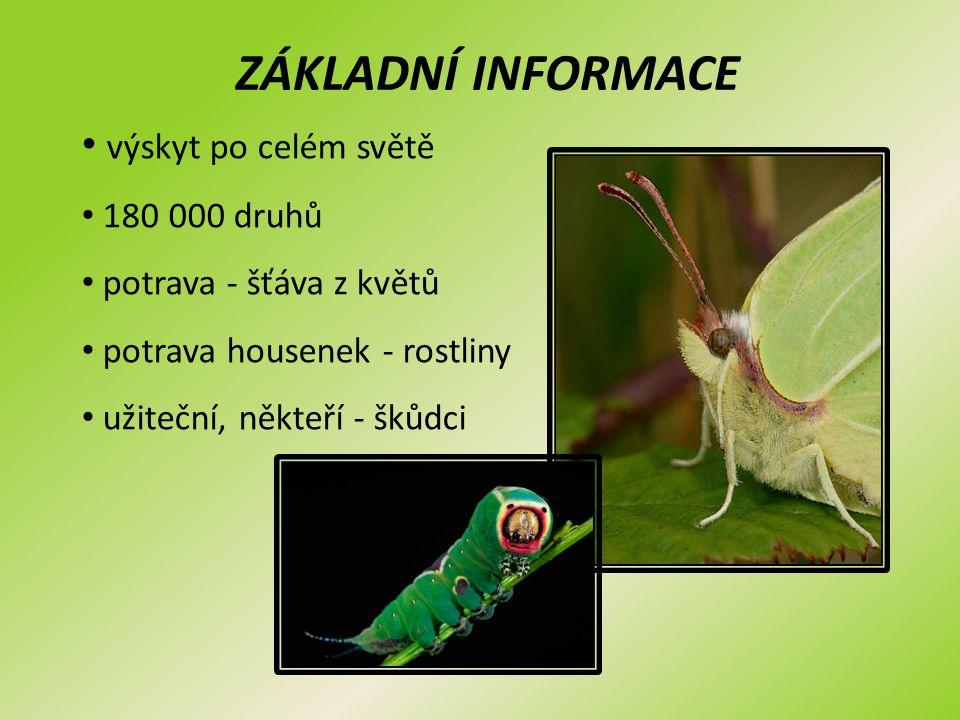ZÁKLADNÍ INFORMACE výskyt po celém světě 180 000 druhů