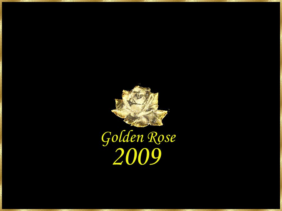 Golden Rose 2009