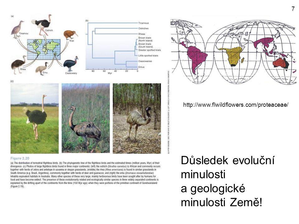 Důsledek evoluční minulosti a geologické minulosti Země!