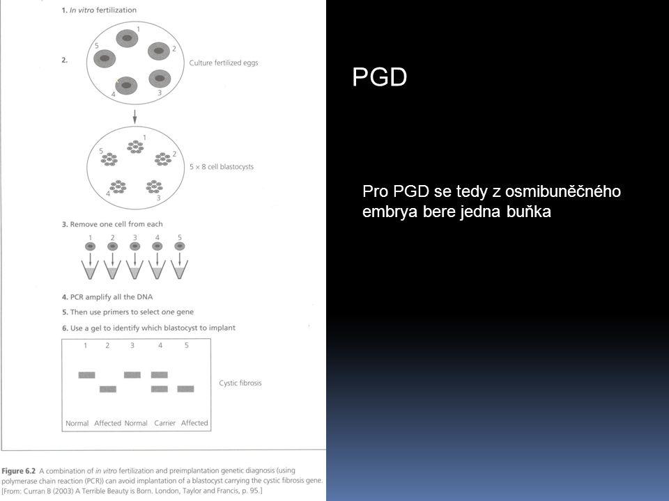 PGD Pro PGD se tedy z osmibuněčného embrya bere jedna buňka