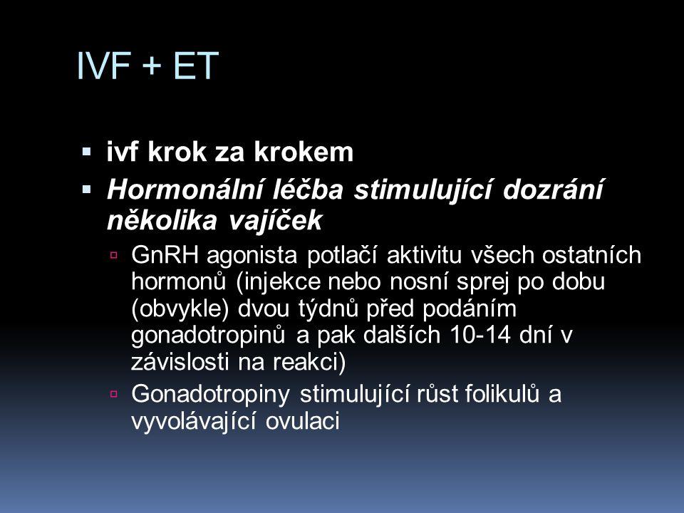IVF + ET ivf krok za krokem