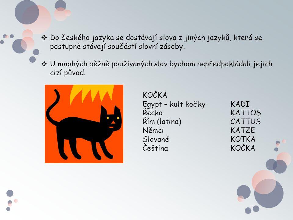 Do českého jazyka se dostávají slova z jiných jazyků, která se postupně stávají součástí slovní zásoby.
