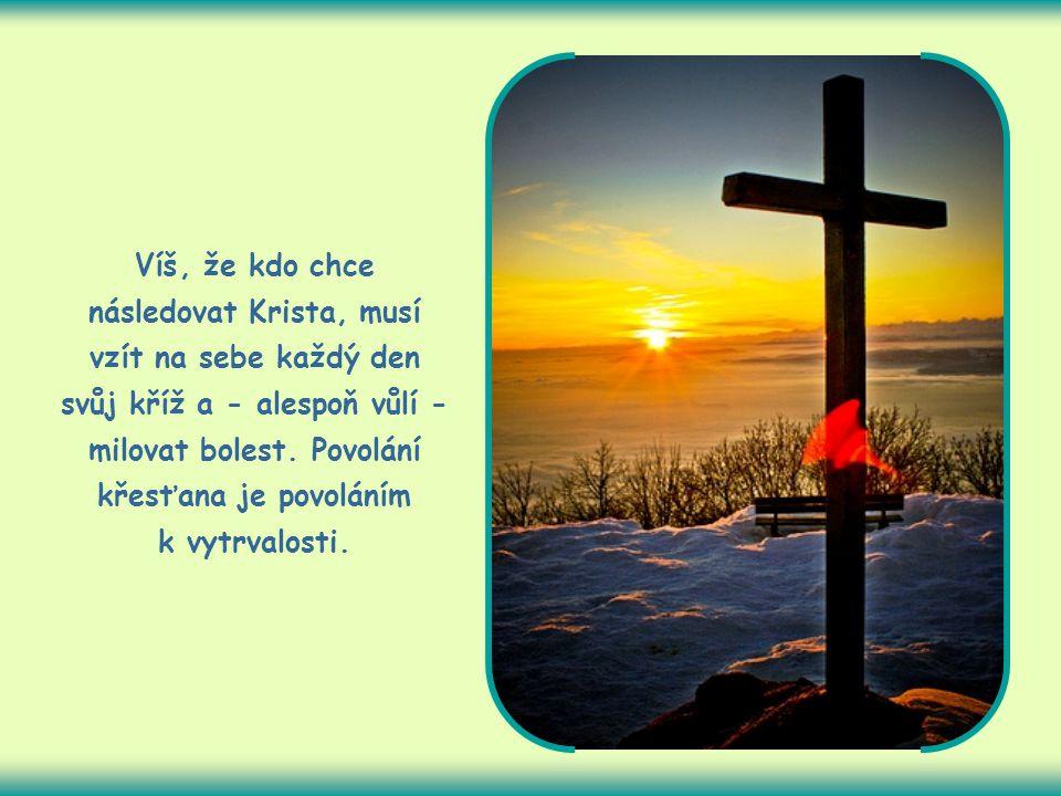 Víš, že kdo chce následovat Krista, musí vzít na sebe každý den svůj kříž a - alespoň vůlí - milovat bolest.