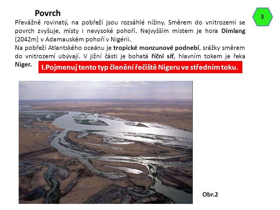 Povrch I.Pojmenuj tento typ členění řečiště Nigeru ve středním toku. 3
