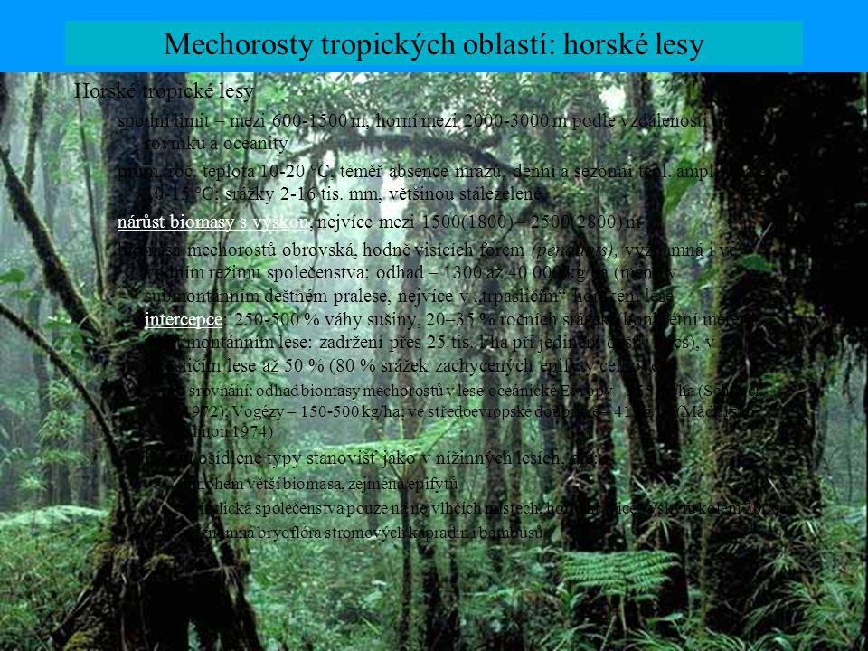 Mechorosty tropických oblastí: horské lesy