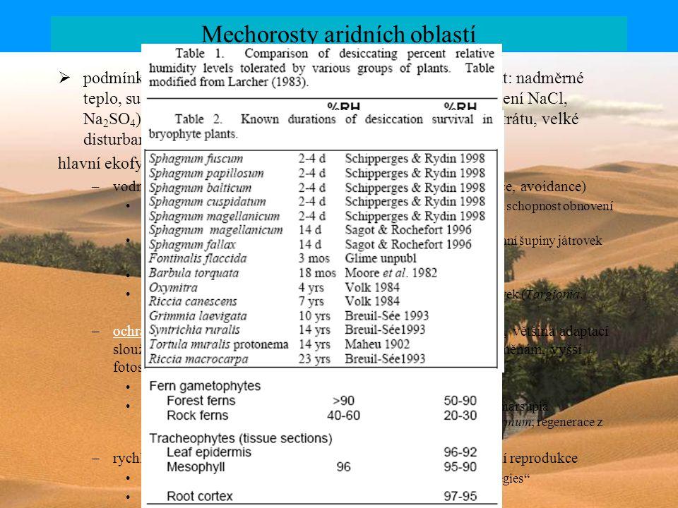 Mechorosty aridních oblastí