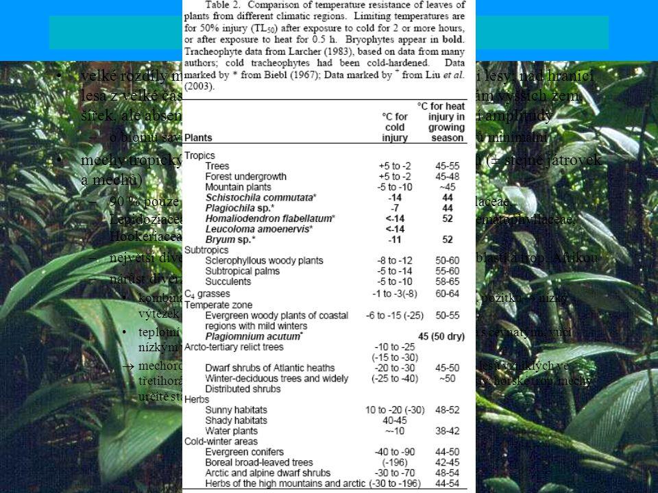 Mechorosty tropických oblastí