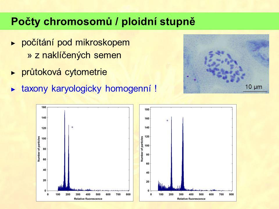 Počty chromosomů / ploidní stupně