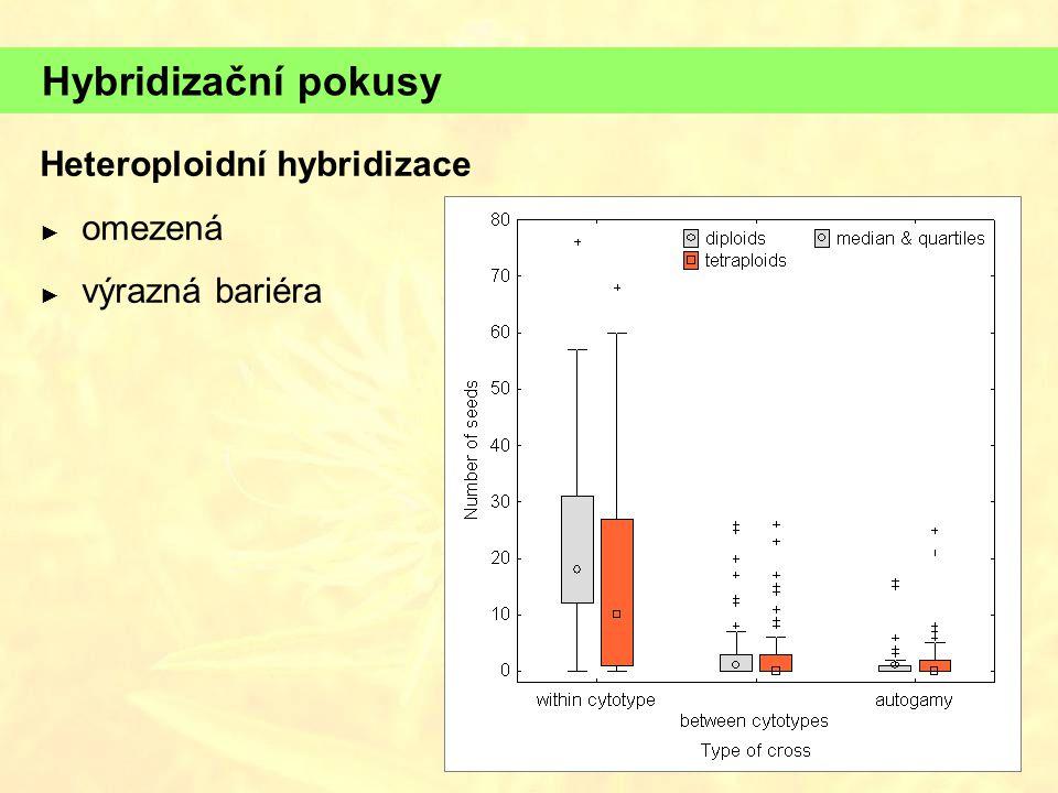 Hybridizační pokusy Heteroploidní hybridizace omezená výrazná bariéra