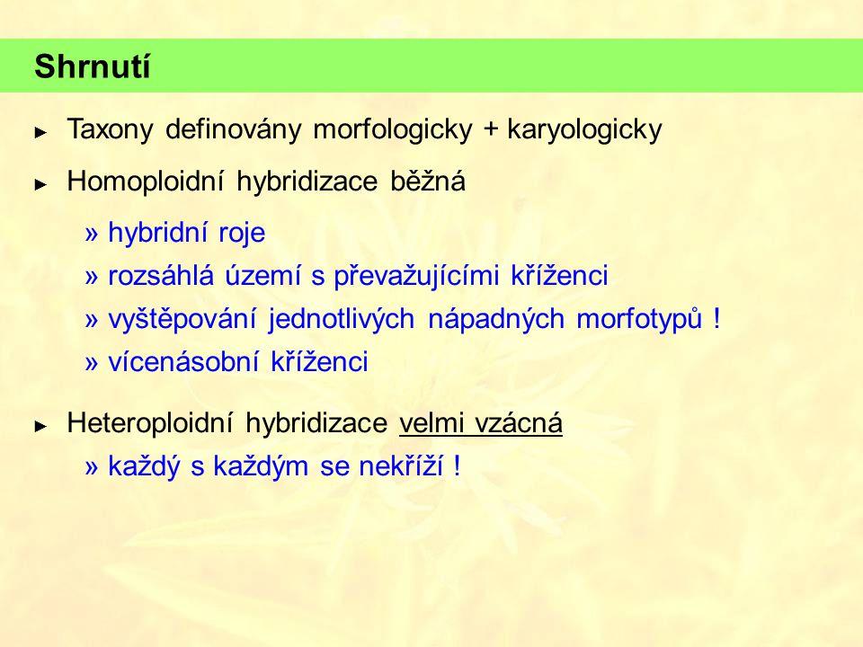 Shrnutí Taxony definovány morfologicky + karyologicky