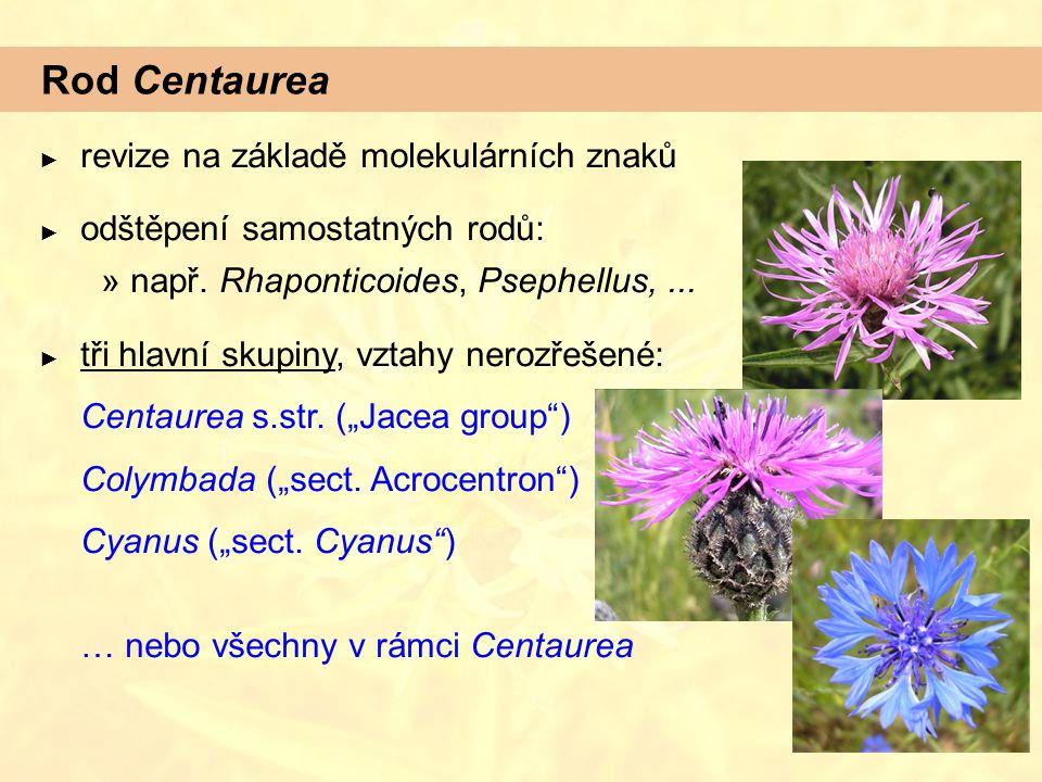 Rod Centaurea revize na základě molekulárních znaků
