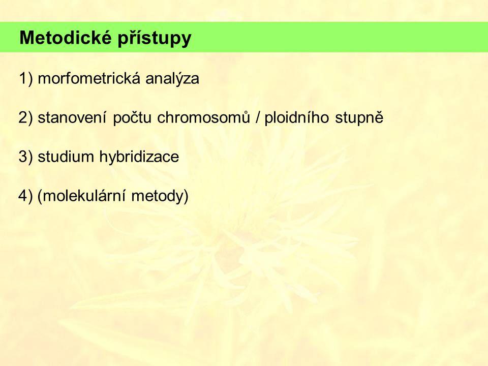 Metodické přístupy 1) morfometrická analýza