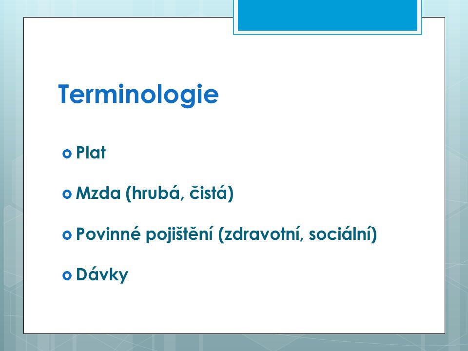 Terminologie Plat Mzda (hrubá, čistá)
