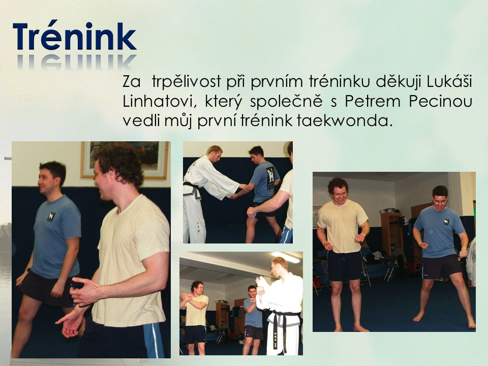 Trénink Za trpělivost při prvním tréninku děkuji Lukáši Linhatovi, který společně s Petrem Pecinou vedli můj první trénink taekwonda.