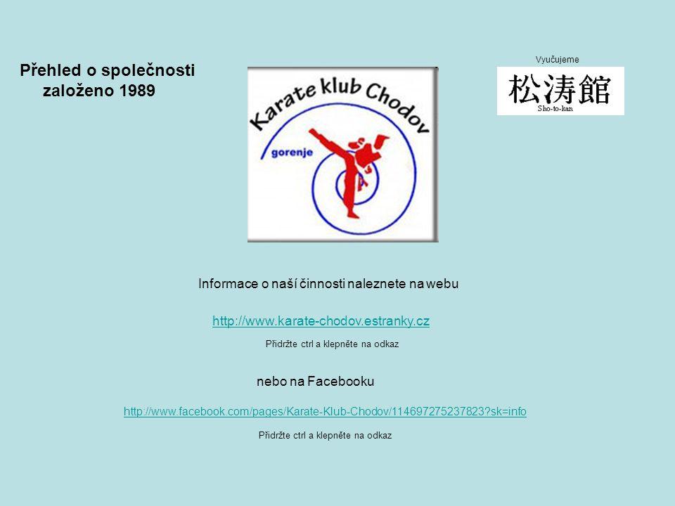 Přehled o společnosti založeno 1989