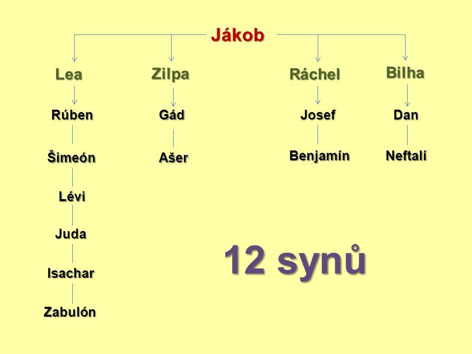 12 synů Jákob Lea Zilpa Ráchel Bilha Rúben Gád Josef Dan Šimeón Ašer