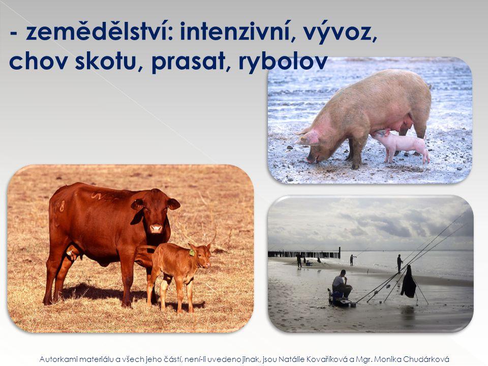- zemědělství: intenzivní, vývoz, chov skotu, prasat, rybolov