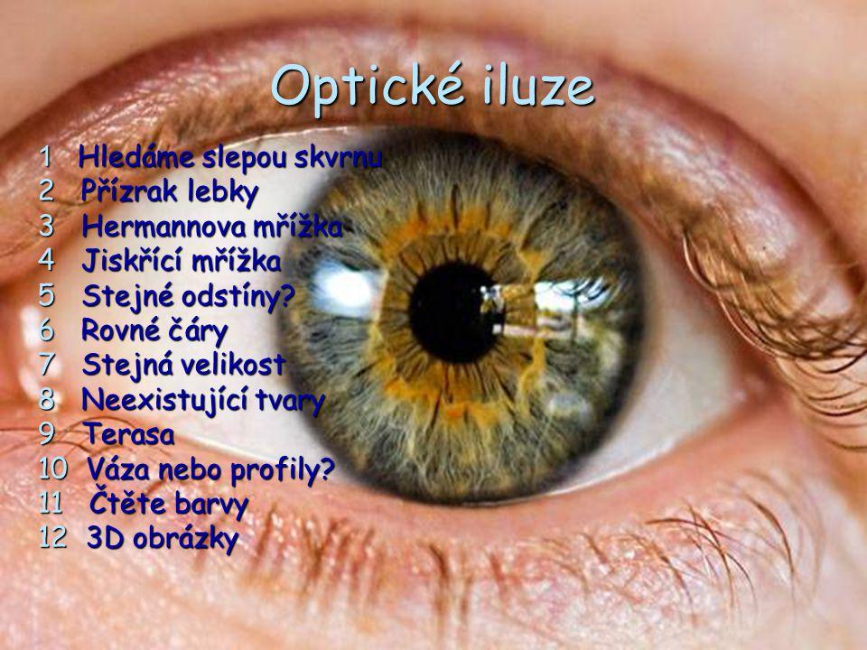 Optické iluze 1 Hledáme slepou skvrnu 2 Přízrak lebky