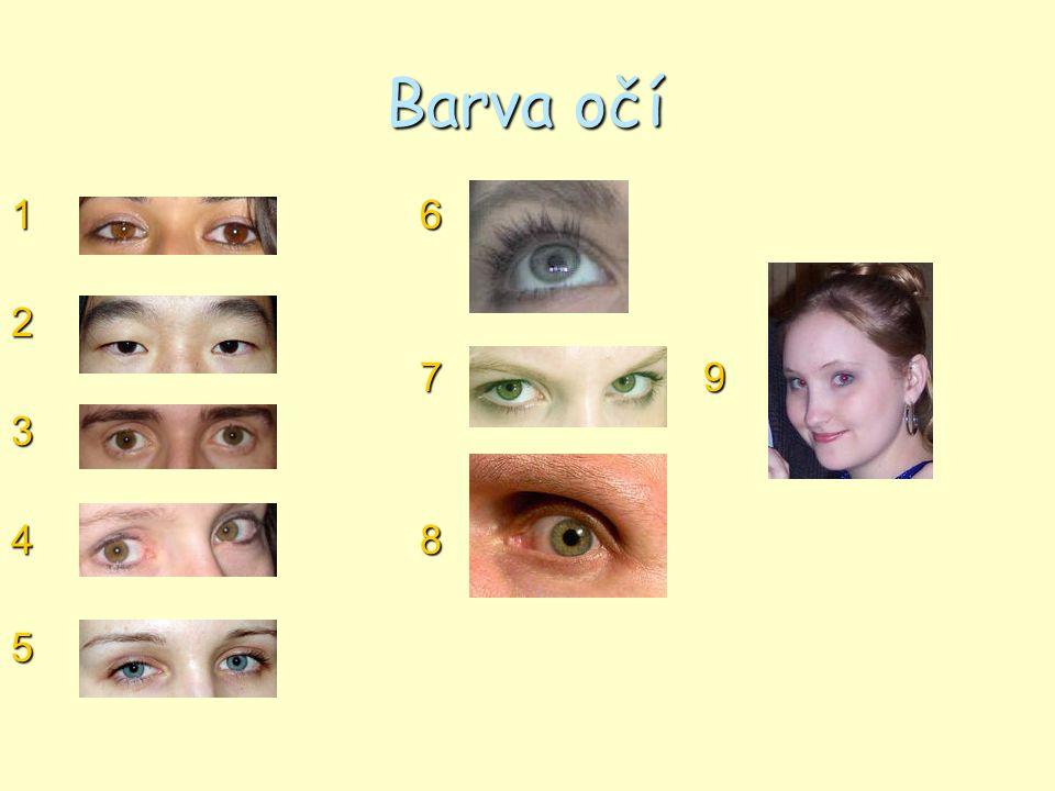 Barva očí 1 6. 2. 7 9. 3. 4 8.