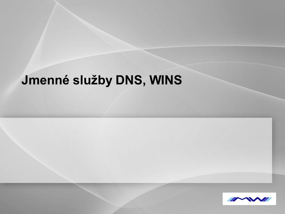 Jmenné služby DNS, WINS