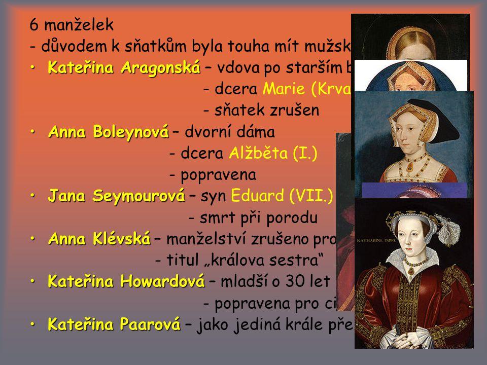 6 manželek - důvodem k sňatkům byla touha mít mužského potomka. Kateřina Aragonská – vdova po starším bratrovi.