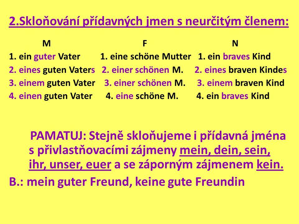 2.Skloňování přídavných jmen s neurčitým členem: