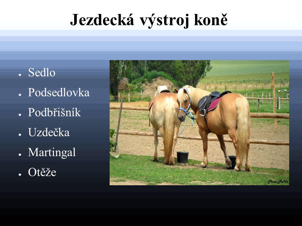 Jezdecká výstroj koně Sedlo Podsedlovka Podbřišník Uzdečka Martingal