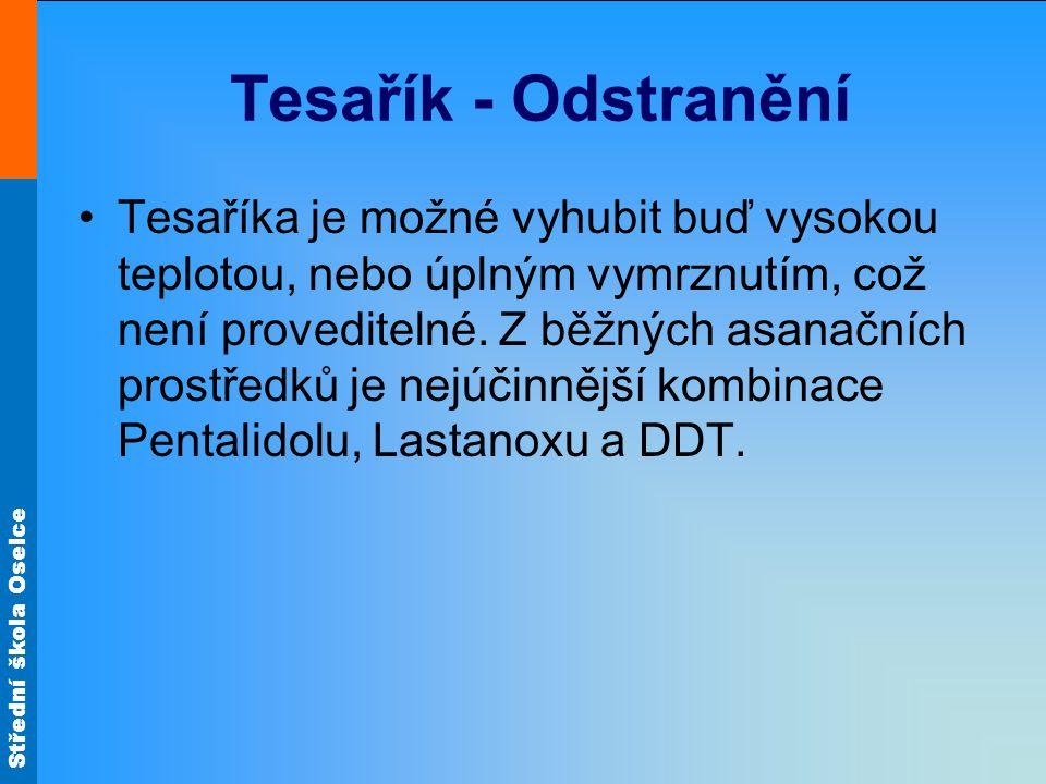 Tesařík - Odstranění