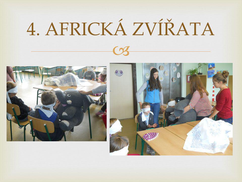 4. AFRICKÁ ZVÍŘATA